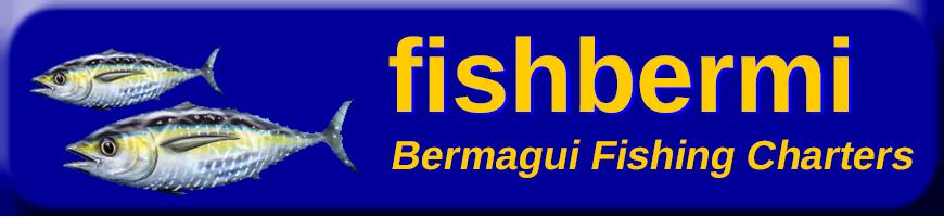 FishBermi Bermagui Fishing Charters